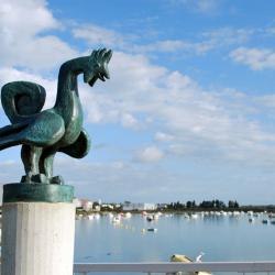 07 Saint Gilles-Croix-de-vie-Le Coq